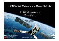 des Workshops (PDF) - SMOS