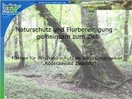 Röderauwald Zabeltitz« [Download,*.pdf, 1,41 MB]