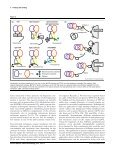New methodologies for measuring protein ... - Fachbereich 5 Biologie - Page 3