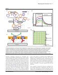 New methodologies for measuring protein ... - Fachbereich 5 Biologie - Page 6