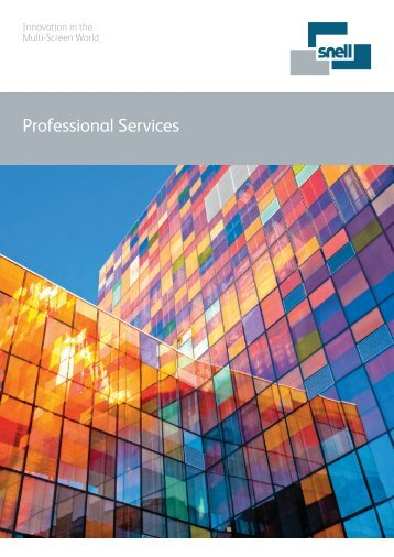 Professional Services Overview - Snell