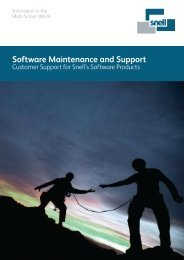 Software Maintenance and Support - Snell