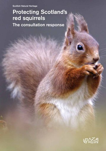 Protecting Scotland's red squirrels - Scottish Natural Heritage