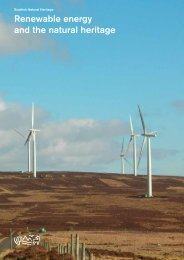 Renewable energy and the natural heritage - Scottish Natural Heritage