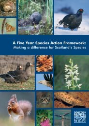 A Five Year Species Action Framework