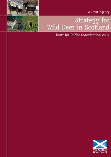 Strategy for Wild Deer in Scotland - Draft for Public Consultation 2007