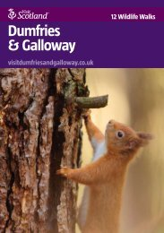 12 Wildlife Walks in Dumfries & Galloway - Scottish Natural Heritage