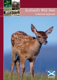 Scotland's Wild Deer: A National Approach - Scottish Natural Heritage