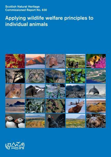 Applying wildlife welfare principles to individual animals