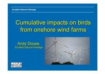 Cumulative impacts on birds from onshore wind farms - Andy Douse