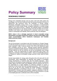Policy Summary - Renewable Energy - Scottish Natural Heritage