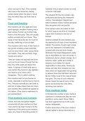 PINE MARTEN - Page 2