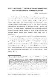 A organização da Companhia Estrada de Ferro São Paulo - Rio ...