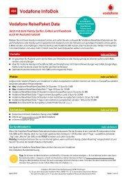 InfoDok 484: Vodafone ReisePaket Data - Snogard