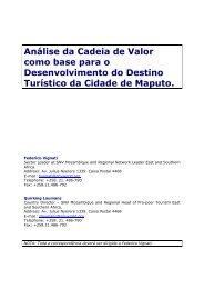 Análise da Cadeia de Valor como base para o ... - SNV