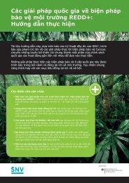 Các giải pháp quốc gia về biện pháp bảo vệ môi trường REDD+ - SNV