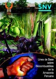 biocombustible A 2008.cdr - Instituto de Investigaciones de la ...