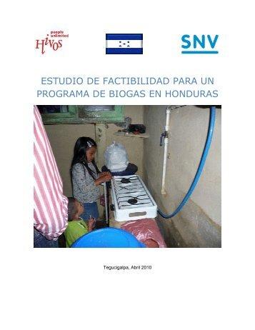 estudio de factibilidad para un programa de biogas en ... - SNV