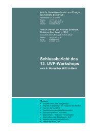 Schlussbericht des 13. UVP-Workshops - Kanton Solothurn