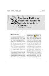Auditory Pathway Representations of Speech Sounds in Humans