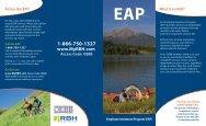(EAP) Flyer