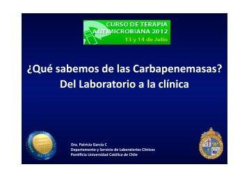 ¿Qué sabemos de las Carbapenemasas?