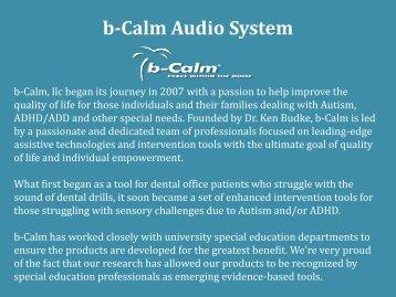 b-Calm Audio System