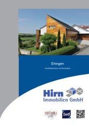 Architektur, Stil und Design - Einfamilienhaus in Nasgenstadt