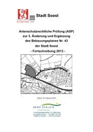 ASP Artenschutz.pdf - Soest