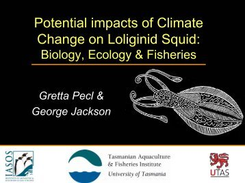 Potential impacts of Climate Change on Loliginid Squid ... - SOEST