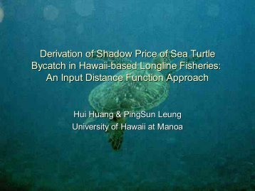 Derivation of Shadow Price of Sea Turtle Bycatch in Hawaii Long