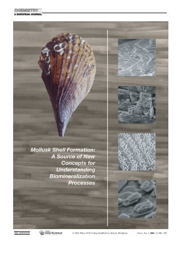 Mollusk Shell Formation: A Source of New Concepts - Wiley Online ...