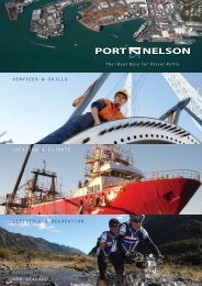 link to PDF - Port Nelson