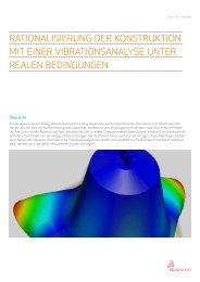 Rationalisierung der Konstruktion mit einer Vibrationsanalyse.