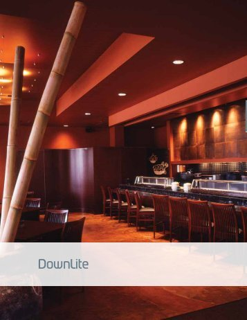 DownLite - Solid State Luminaires