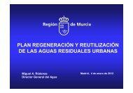 Plan Region Murcia.pdf