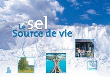 Projet plaquette:Mise en page 1 - Solvay Bresse