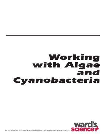 Working with Algae and Cyanobacteria - Sargent Welch