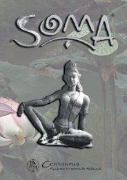 Die SOMA-Broschüre zum Download (PDF, 13 MB)