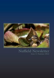 Newsletter Issue 11 - Nuffield College