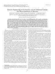 Genetic Engineering of Escherichia coli for ... - Chemical Engineering
