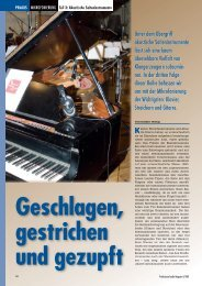 Unter dem Obergriff akustische Saiteninstrumente ... - Sonic Media