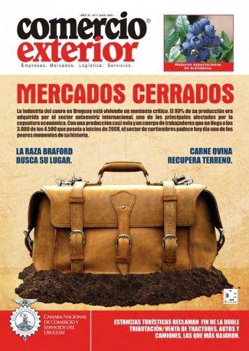 100 Principales Importadores - Chile como exportador de servicios