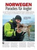 Norwegen - Blinker - Seite 3