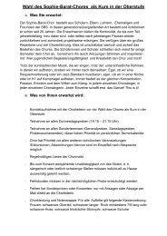 Informationen für Schülerinnen und Schüler [pdf-Dokument]