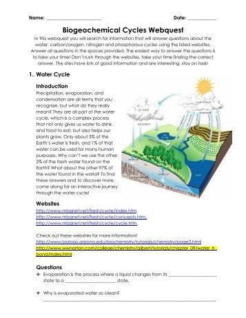 ecology webquest fulton county schools. Black Bedroom Furniture Sets. Home Design Ideas