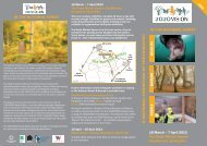2020 vision leaflet.indd - The National Forest
