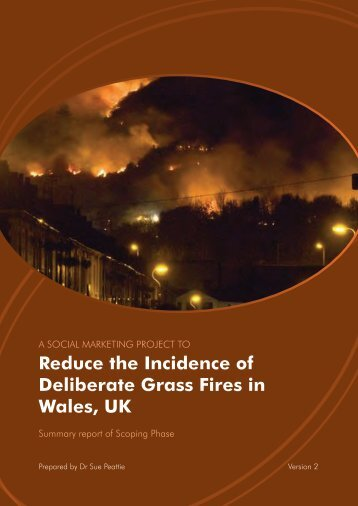 1. Bernie Summary Report - South Wales Fire and Rescue Service