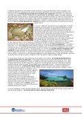 UN TETTO IN RAME PER PADRE PIO - Page 5