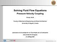 Solving Fluid Flow Equations